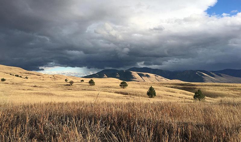 Montana moody sky